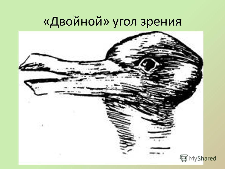 «Двойной» угол зрения