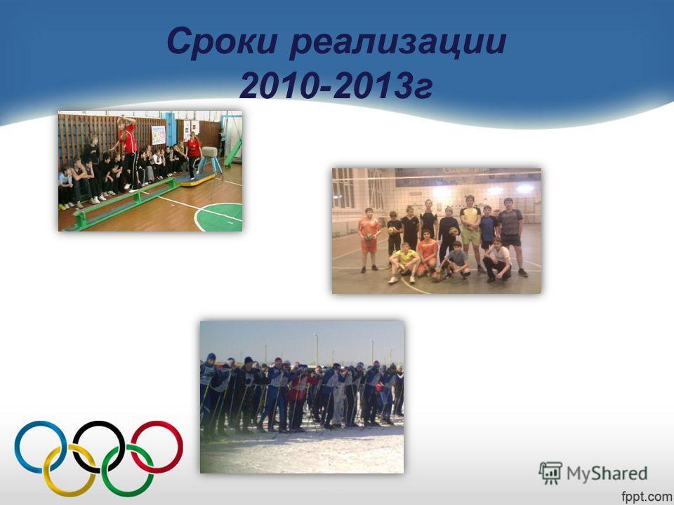 Сроки реализации 2010-2013 г