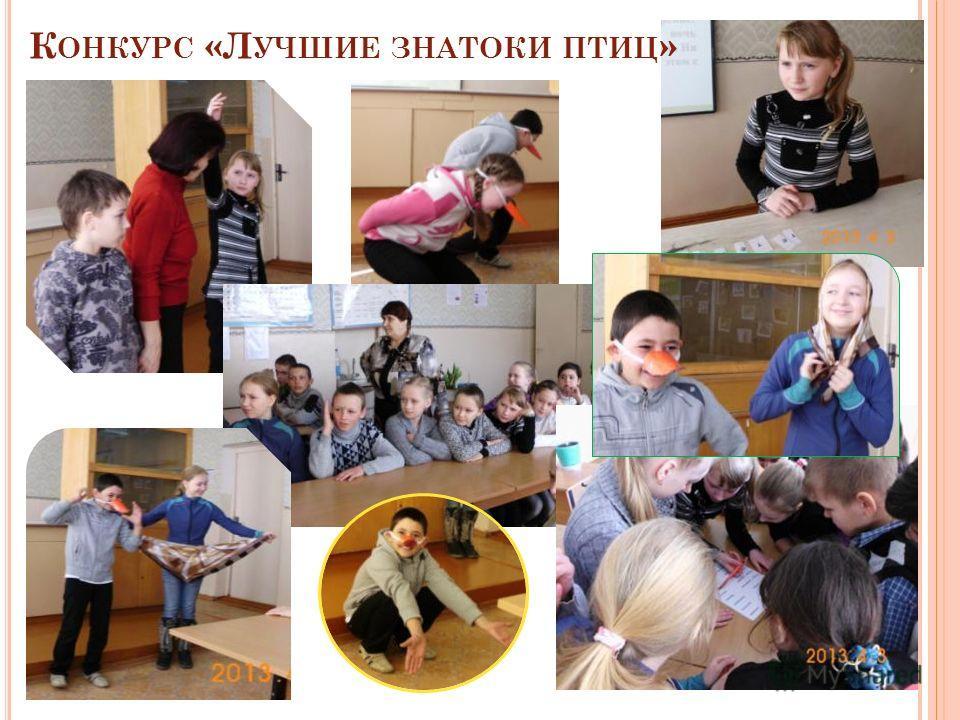 К ОНКУРС «Л УЧШИЕ ЗНАТОКИ ПТИЦ »