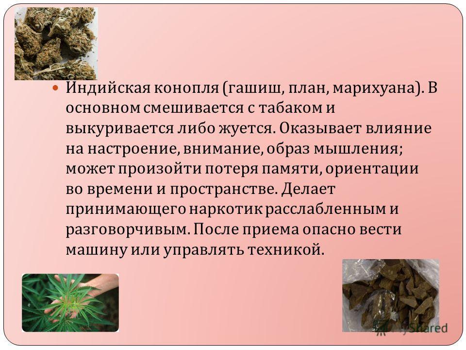 Индийская конопля ( гашиш, план, марихуана ). В основном смешивается с табаком и выкуривается либо жуется. Оказывает влияние на настроение, внимание, образ мышления ; может произойти потеря памяти, ориентации во времени и пространстве. Делает принима