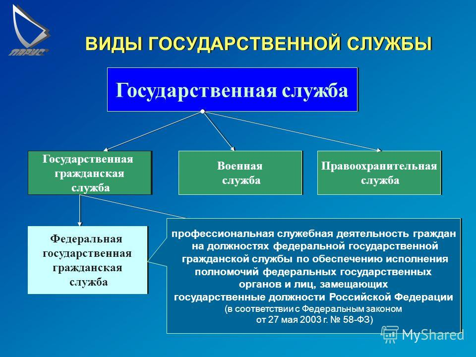 Государственная и муниципальная служба схемы