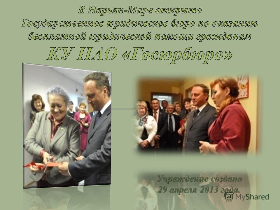 Учреждение создано 29 апреля 2013 года.