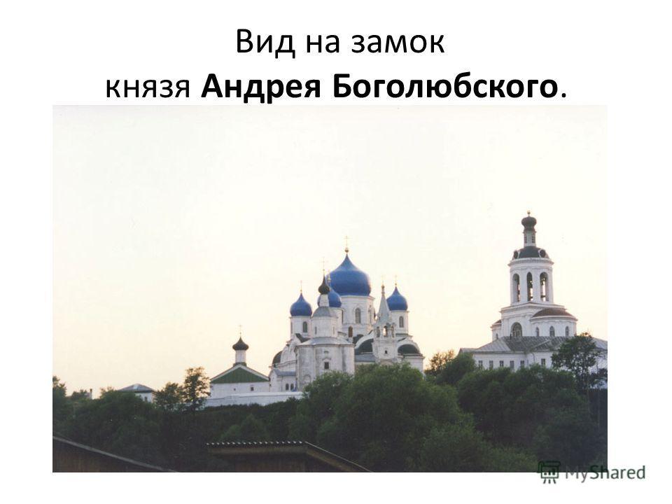 Вид на замок князя Андрея Боголюбского.