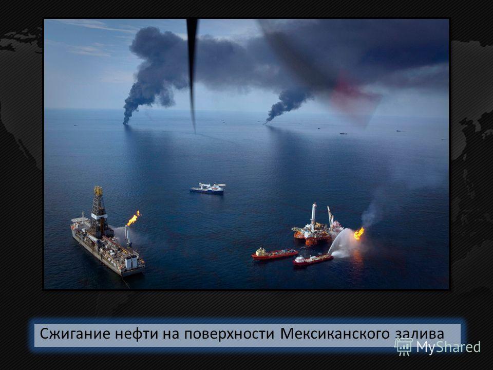 Сжигание нефти на поверхности Мексиканского залива