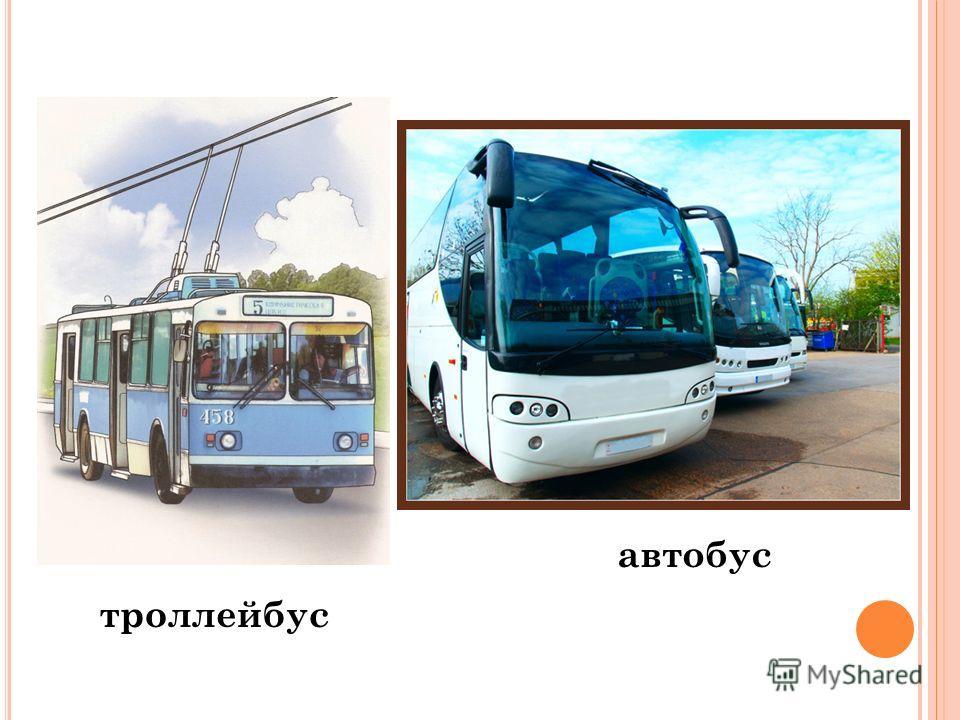 автобус троллейбус