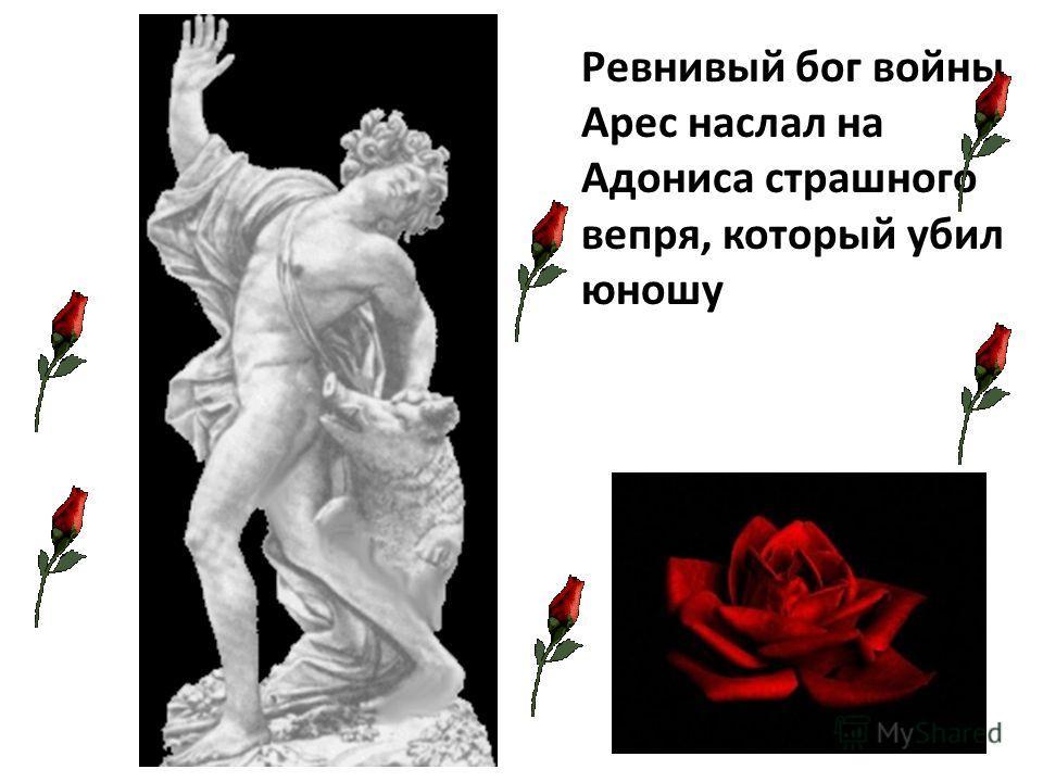 Ревнивый бог войны Арес наслал на Адониса страшного вепря, который убил юношу