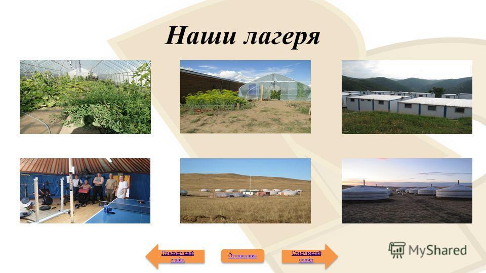Наши лагеря Следующий слайд Следующий слайд Предыдущий слайд Предыдущий слайд Оглавление