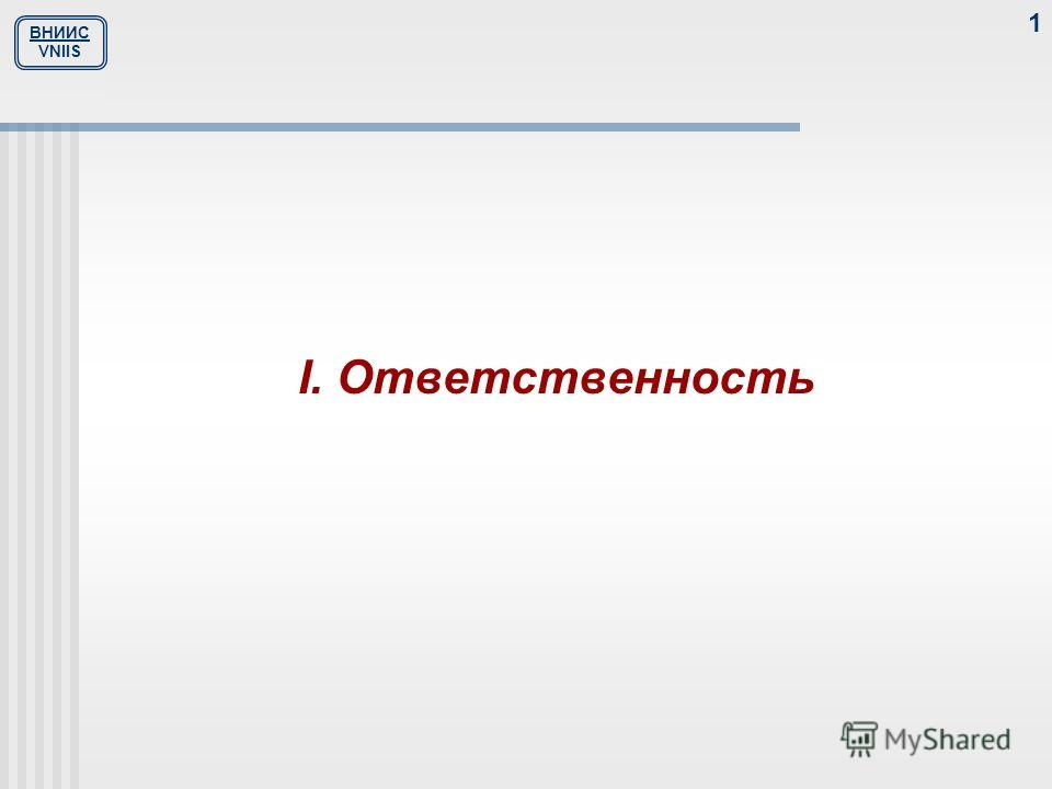 ВНИИС VNIIS 1 I. Ответственность