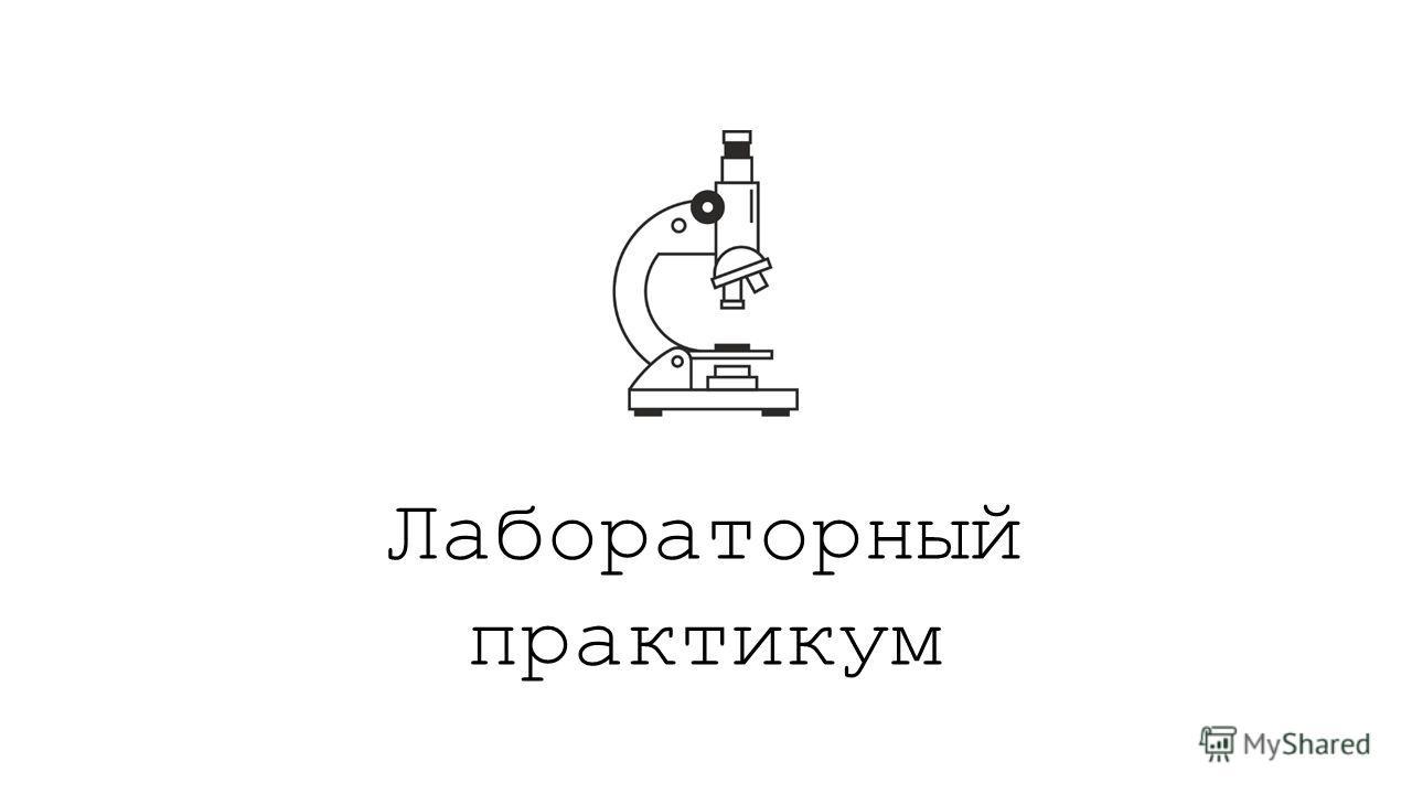 Лабораторный практикум