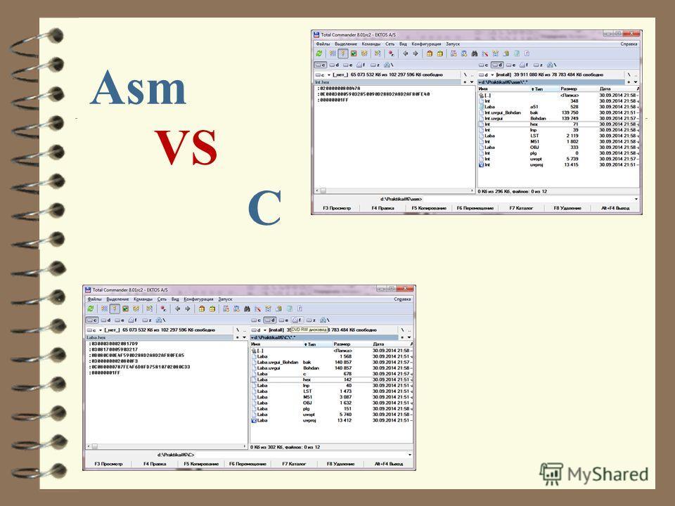 Asm VS C