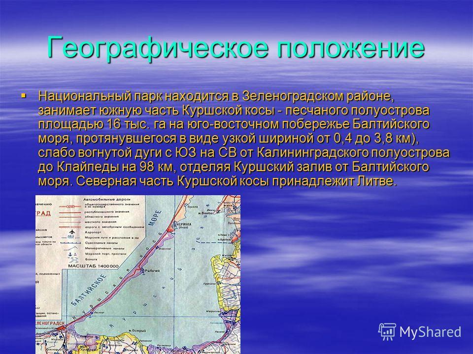 Географическое положение Национальный парк находится в Зеленоградском районе, занимает южную часть Куршской косы - песчаного полуострова площадью 16 тыс. га на юго-восточном побережье Балтийского моря, протянувшегося в виде узкой шириной от 0,4 до 3,