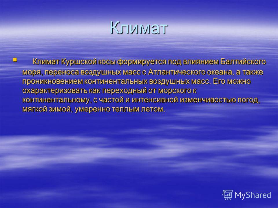 Климат Климат Куршской косы формируется под влиянием Балтийского моря, переноса воздушных масс с Атлантического океана, а также проникновением континентальных воздушных масс. Его можно охарактеризовать как переходный от морского к континентальному, с