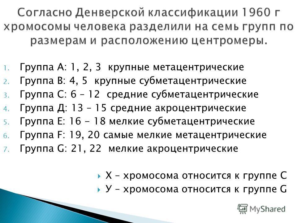 1. Группа А: 1, 2, 3 крупные метацентрические 2. Группа В: 4, 5 крупные субметацентрические 3. Группа С: 6 – 12 средние субметацентрические 4. Группа Д: 13 – 15 средние акроцентрические 5. Группа Е: 16 - 18 мелкие субметацентрические 6. Группа F: 19,