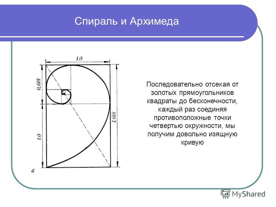 Спираль и Архимеда Последовательно отсекая от золотых прямоугольников квадраты до бесконечности, каждый раз соединяя противоположные точки четвертью окружности, мы получим довольно изящную кривую