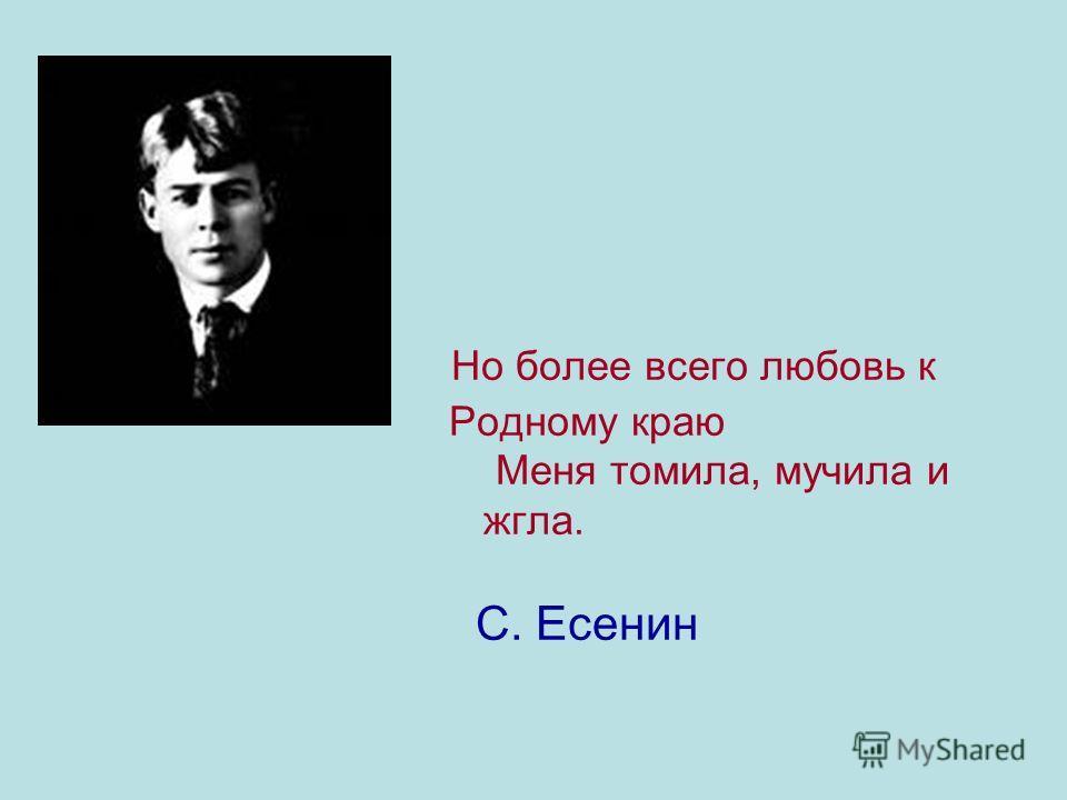 Но более всего любовь к Родному краю Меня томила, мучила и жгла. С. Есенин