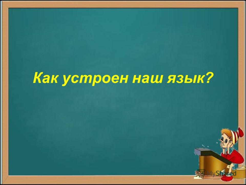 Как устроен наш язык?