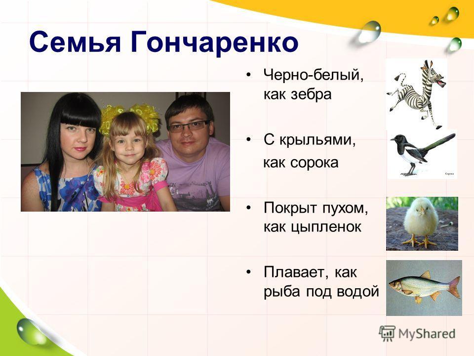 Семья Гончаренко Черно-белый, как зебра С крыльями, как сорока Покрыт пухом, как цыпленок Плавает, как рыба под водой