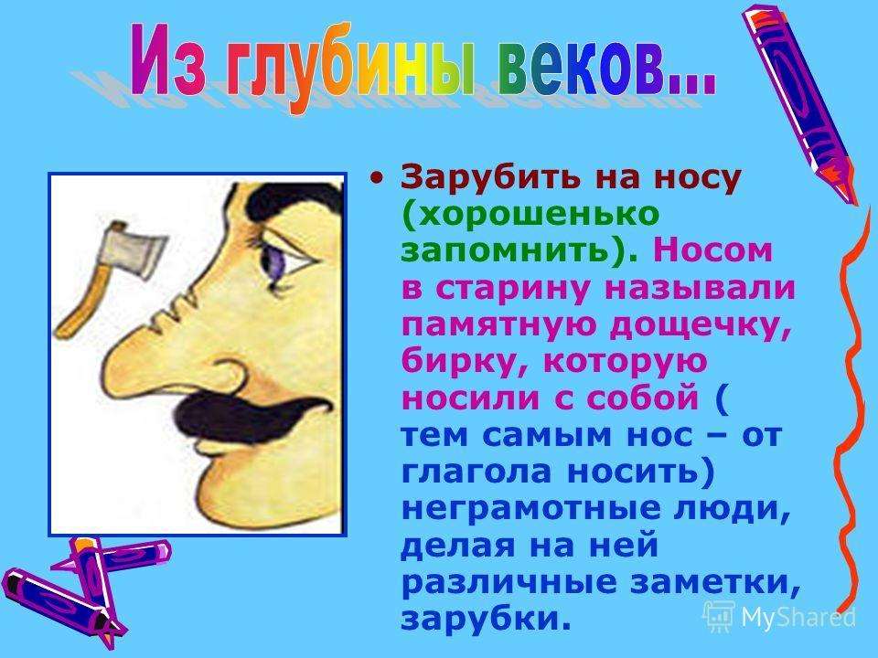 Зарубить на носу (хорошенько запомнить). Носом в старину называли памятную дощечку, бирку, которую носили с собой ( тем самым нос – от глагола носить) неграмотные люди, делая на ней различные заметки, зарубки.