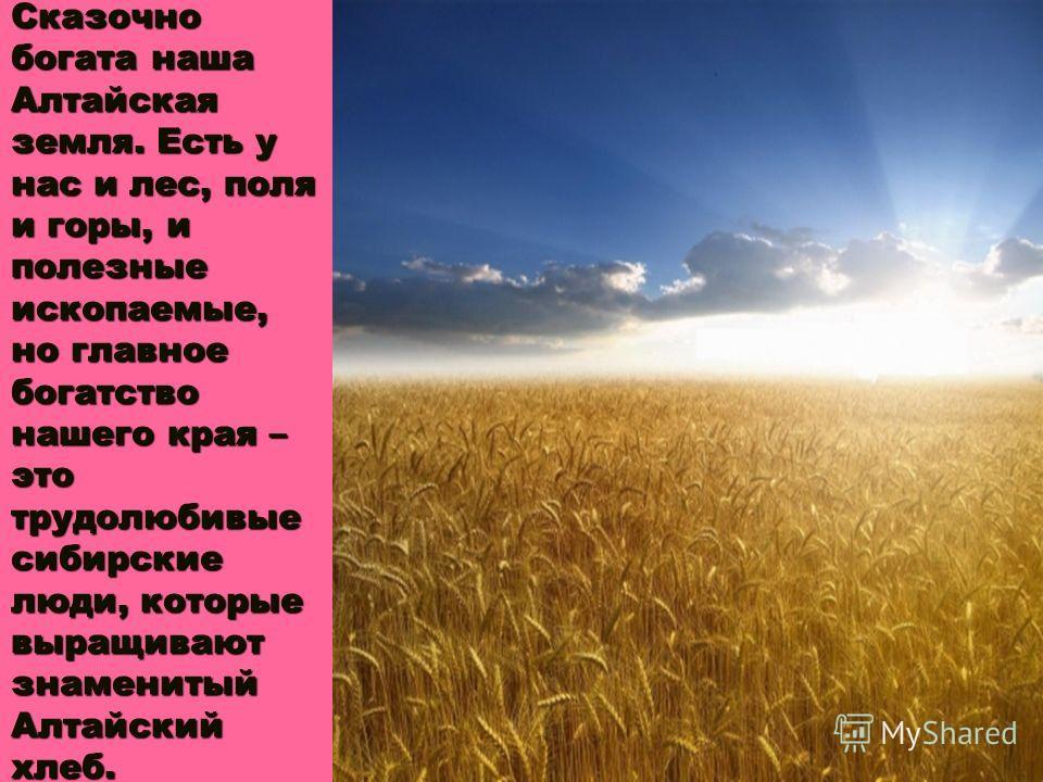 Сказочно богата наша Алтайская земля. Есть у нас и лес, поля и горы, и полезные ископаемые, но главное богатство нашего края – это трудолюбивые сибирские люди, которые выращивают знаменитый Алтайский хлеб.