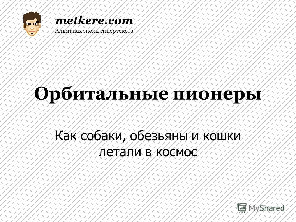 Орбитальные пионеры Как собаки, обезьяны и кошки летали в космос metkere.com Альманах эпохи гипертекста