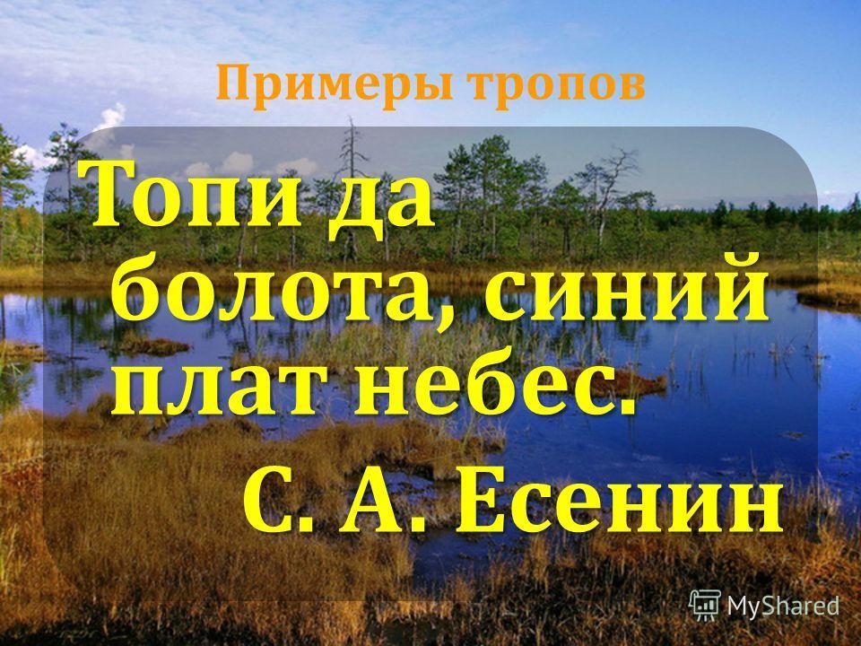 Примеры тропов Топи да болота, синий плат небес. С. А. Есенин