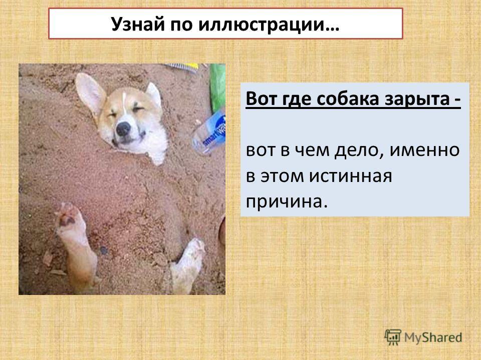 Узнай по иллюстрации… Вот где собака зарыта - вот в чем дело, именно в этом истинная причина.