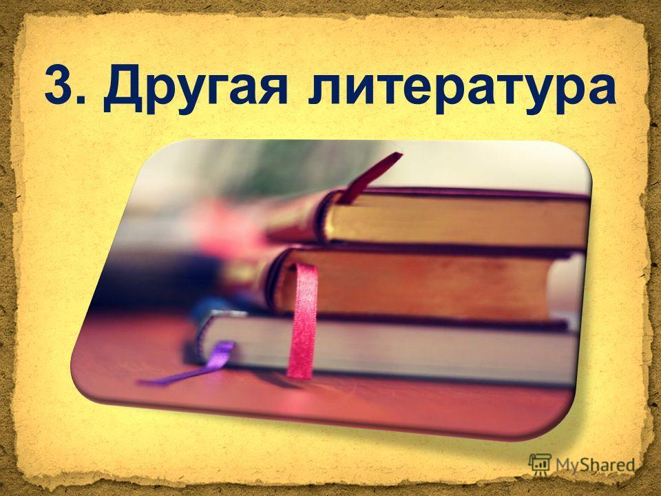 3. Другая литература