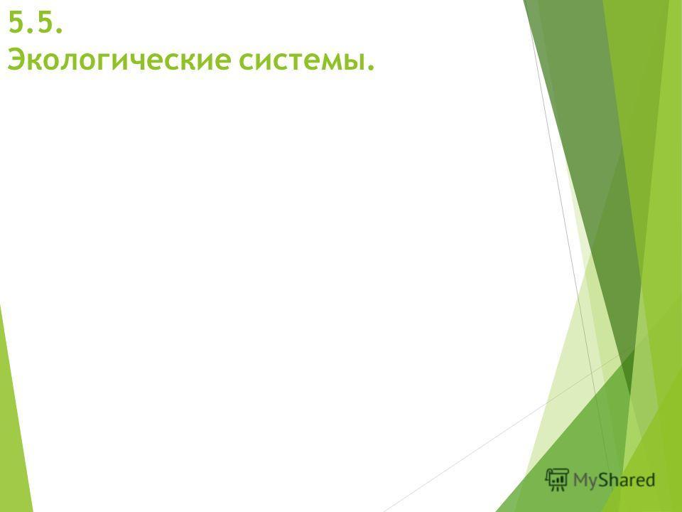 5.5. Экологические системы.
