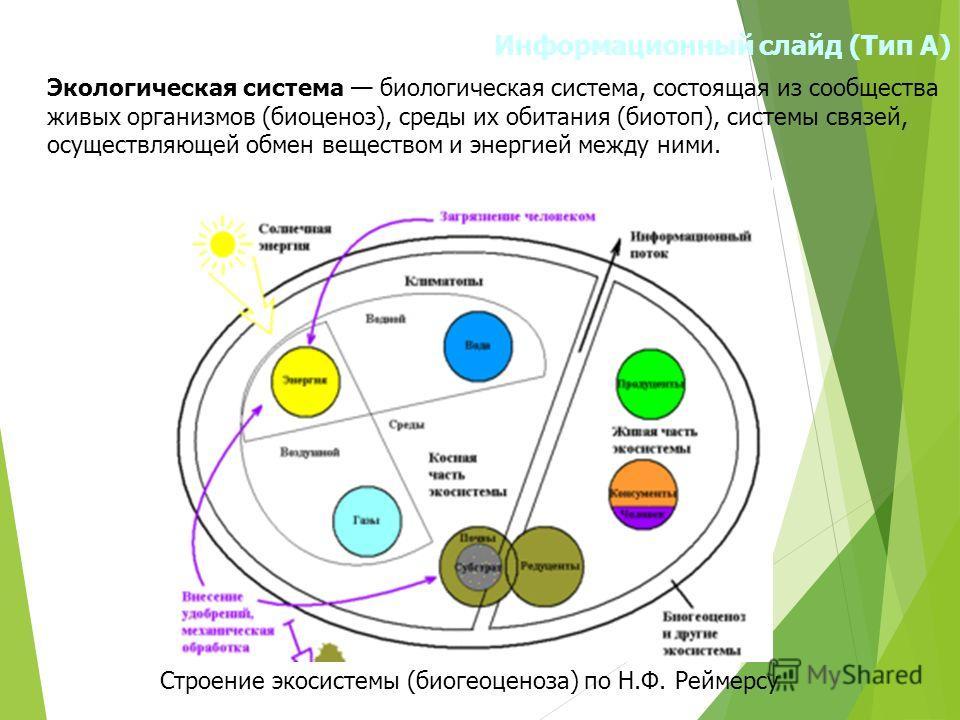 Информационный слайд (Тип А) Экологическая система биологическая система, состоящая из сообщества живых организмов (биоценоз), среды их обитания (биотоп), системы связей, осуществляющей обмен веществом и энергией между ними. Строение экосистемы (биог