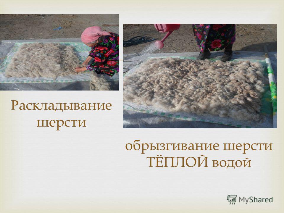 Раскладывание шерсти обрызгивание шерсти ТЁПЛОЙ водой