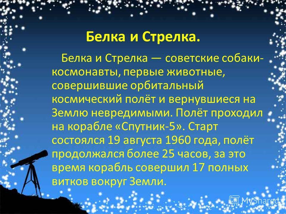 Белка и Стрелка. Белка и Стрелка советские собаки- космонавты, первые животные, совершившие орбитальный космический полёт и вернувшиеся на Землю невредимыми. Полёт проходил на корабле «Спутник-5». Старт состоялся 19 августа 1960 года, полёт продолжал