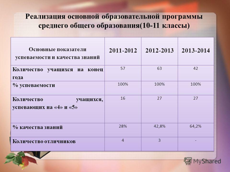 Реализация основной образовательной программы среднего общего образования(10-11 классы)