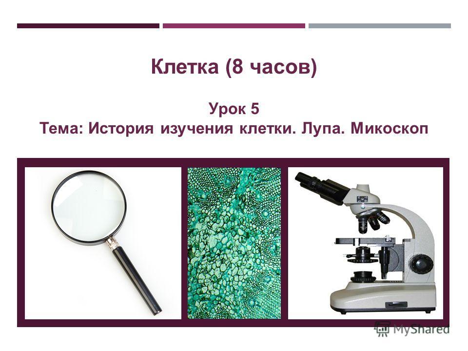 Клетка (8 часов) Урок 5 Тема: История изучения клетки. Лупа. Микоскоп