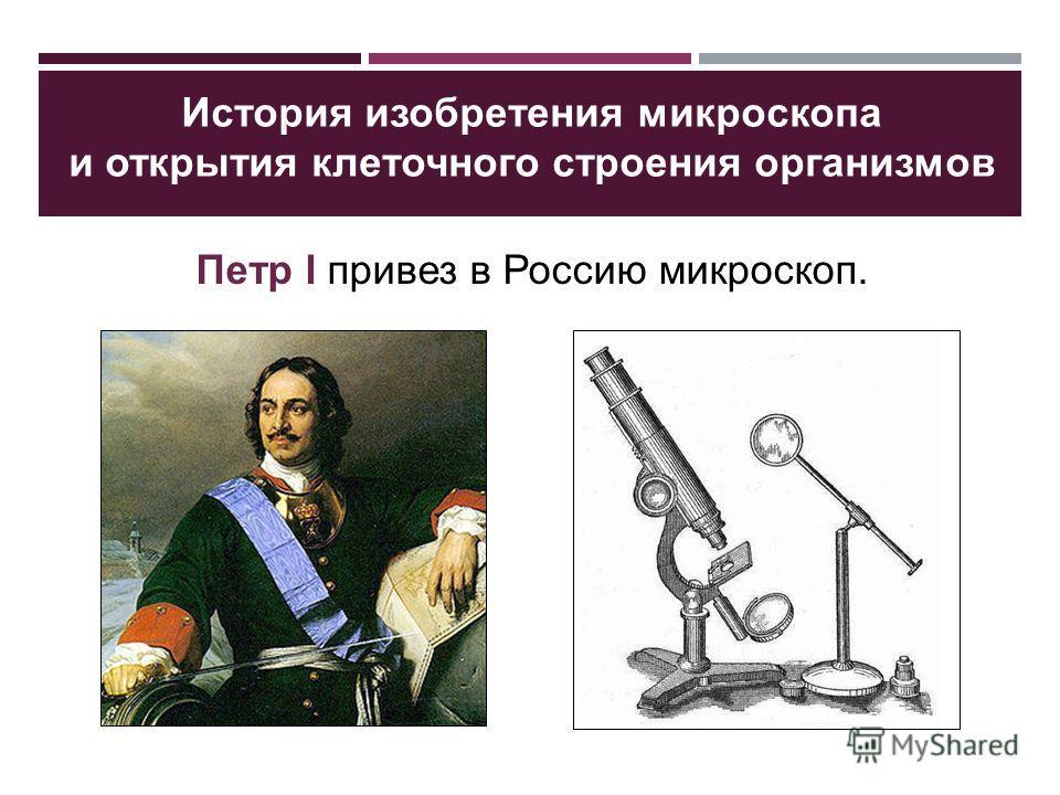 Петр І привез в Россию микроскоп. История изобретения микроскопа и открытия клеточного строения организмов