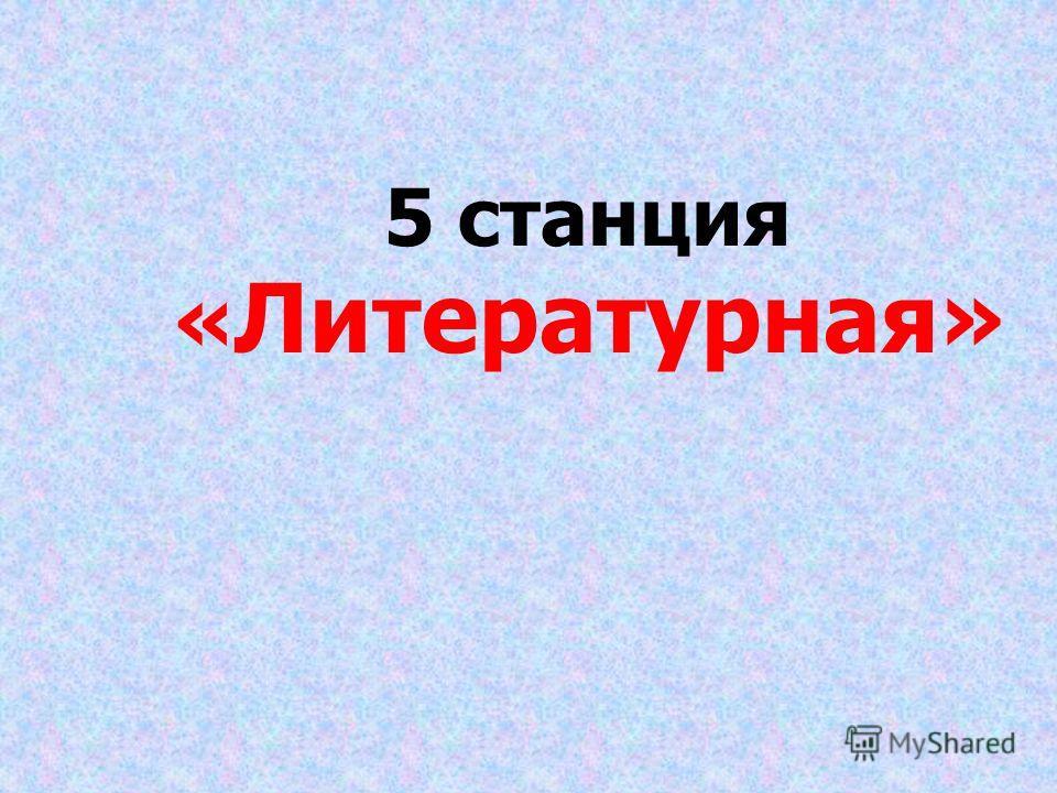 5 станция « Литературная»