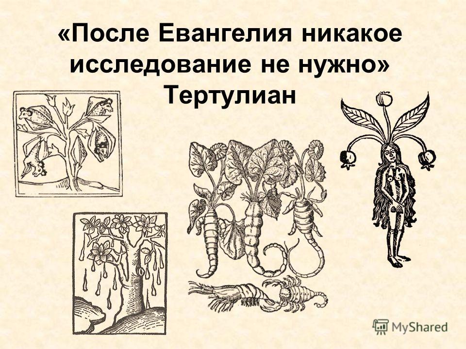 «После Евангелия никакое исследование не нужно» Тертулиан
