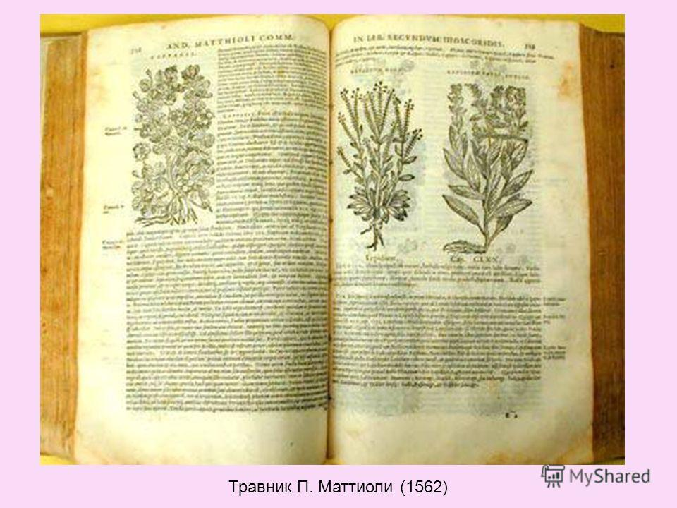 Травник П. Маттиоли (1562)