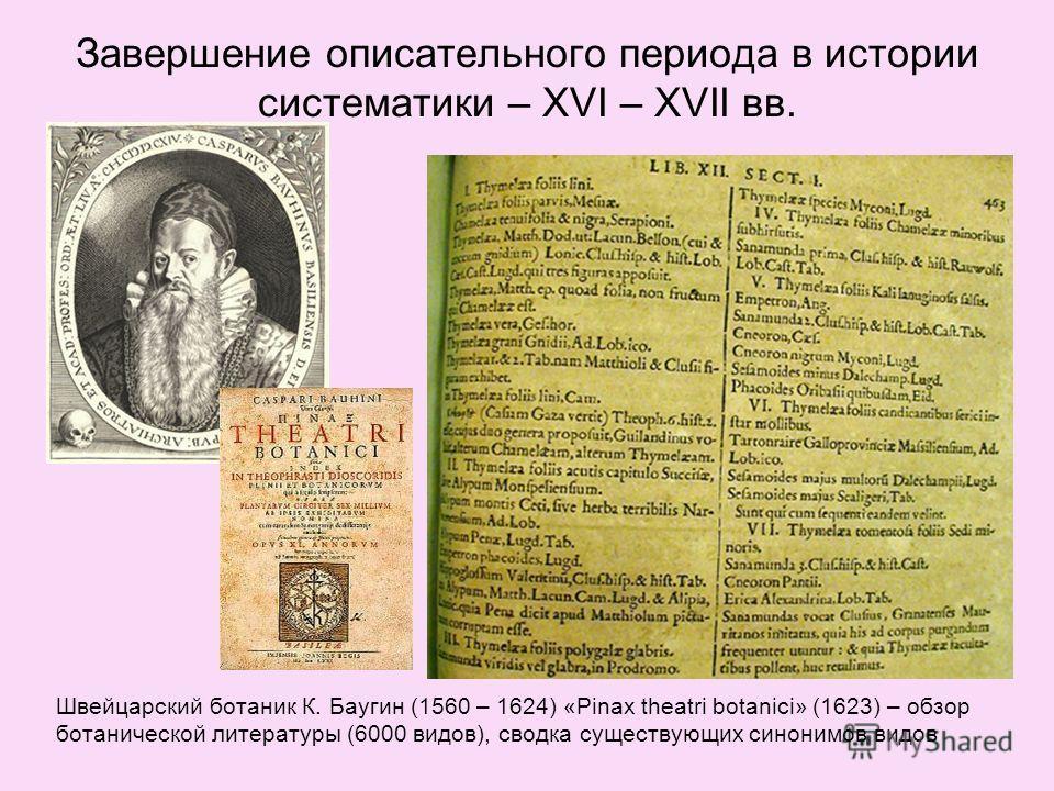 Завершение описательного периода в истории систематики – XVI – XVII вв. Швейцарский ботаник К. Баугин (1560 – 1624) «Pinax theatri botanici» (1623) – обзор ботанической литературы (6000 видов), сводка существующих синонимов видов