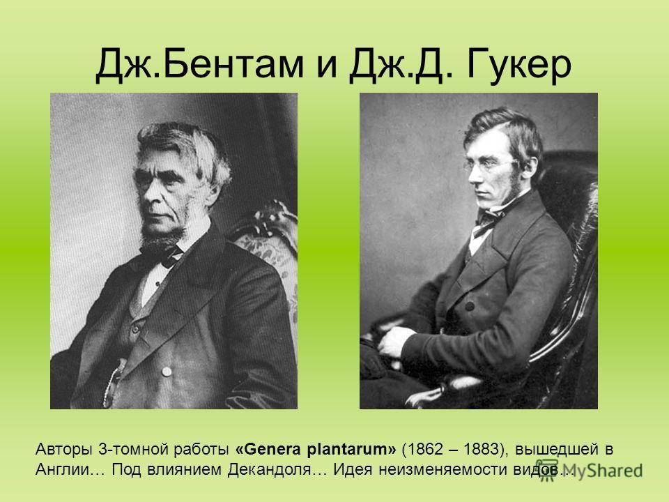 Дж.Бентам и Дж.Д. Гукер Авторы 3-томной работы «Genera plantarum» (1862 – 1883), вышедшей в Англии… Под влиянием Декандоля… Идея неизменяемости видов…