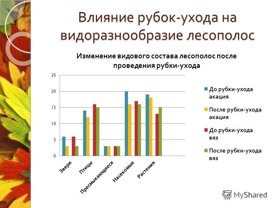 Влияние рубок - ухода на видео разнообразие лесополос