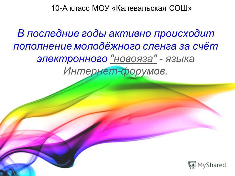 В последние годы активно происходит пополнение молодёжного сленга за счёт электронного новояза - языка Интернет-форумов. 10-А класс МОУ «Калевальская СОШ»