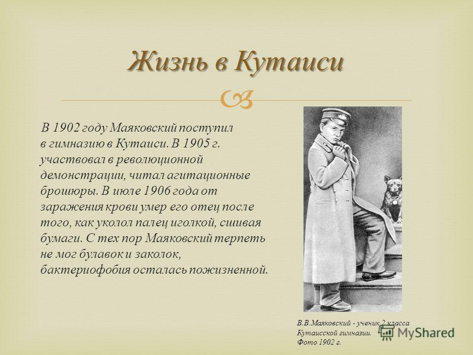 В 1902 году Маяковский поступил в гимназию в Кутаиси. В 1905 г. участвовал в революционной демонстрации, читал агитационные брошюры. В июле 1906 года от заражения крови умер его отец после того, как уколол палец иголкой, сшивая бумаги. С тех пор Маяк