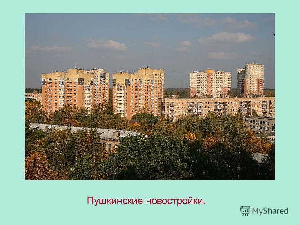 Пушкинские новостройки.