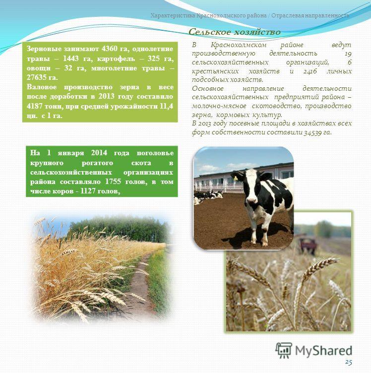 Сельское хозяйство 25 Характеристика Краснохолмского района / Отраслевая направленность В Краснохолмском районе ведут производственную деятельность 19 сельскохозяйственных организаций, 6 крестьянских хозяйств и 2416 личных подсобных хозяйств. Основно