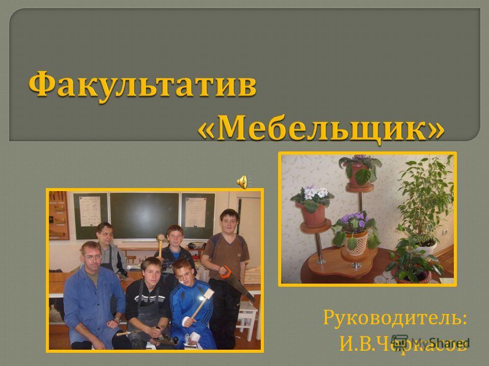 Руководитель : И. В. Черкасов