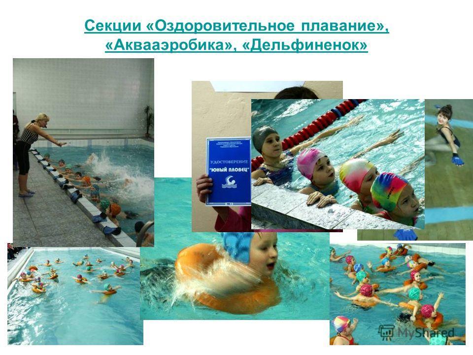Секции «Оздоровительное плавание», «Аквааэробика», «Дельфиненок»