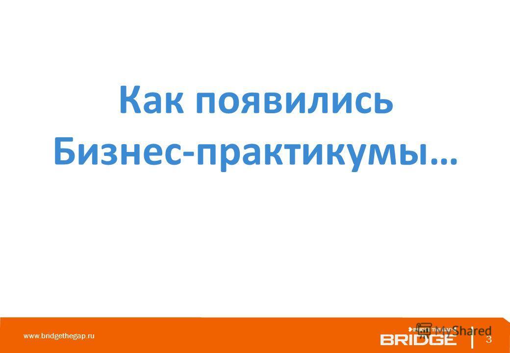 Как появились Бизнес-практикумы… 3 www.bridgethegap.ru 3