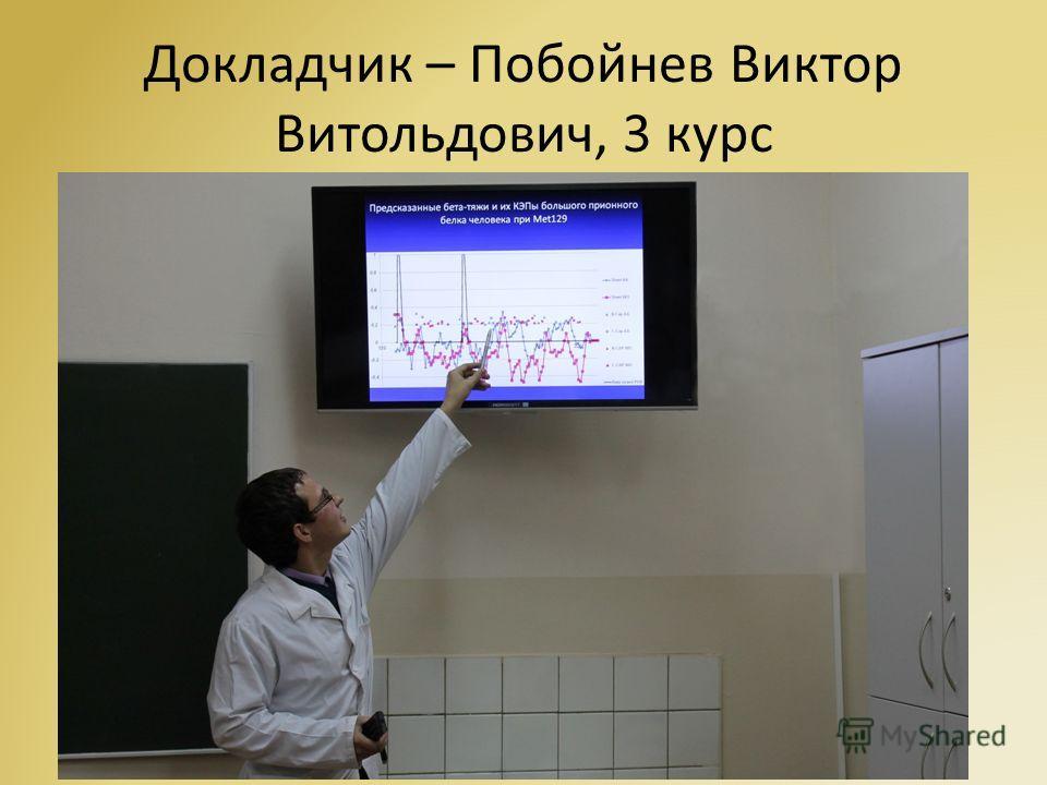 Заседания СНК в 2013 году 22 октября состоялось очередное заседание СНК общей химии и вычислительной биологии. На данном заседании выступил староста СНК – Побойнев В. В. с двумя докладами: «Механизмы образования бета-амилоида в большом приемном белке