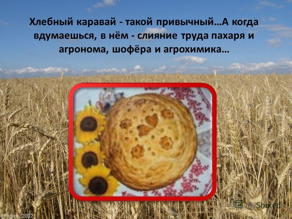 Хлебный каравай - такой привычный…А когда вдумаешься, в нём - слияние труда пахаря и агронома, шофёра и агрохимика…