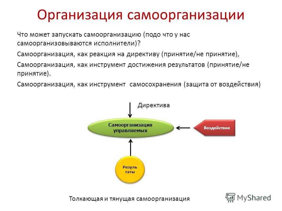 Организация самоорганизации Что может запускать самоорганизацию (подо что у нас самоорганизовываются исполнители)? Самоорганизация, как реакция на директиву (принятие/не принятие), Самоорганизация, как инструмент достижения результатов (принятие/не п